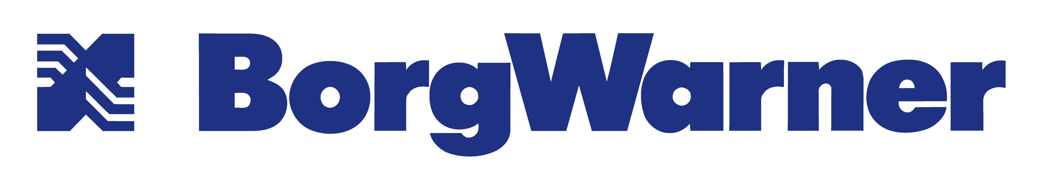 Read more about the article BorgWarner